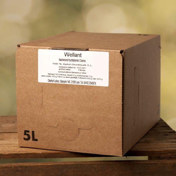 Sortenreiner Apfelsaft 5l - auch als 4er Vorteilspack