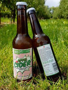 Apfel Cider aus dem Alten Land